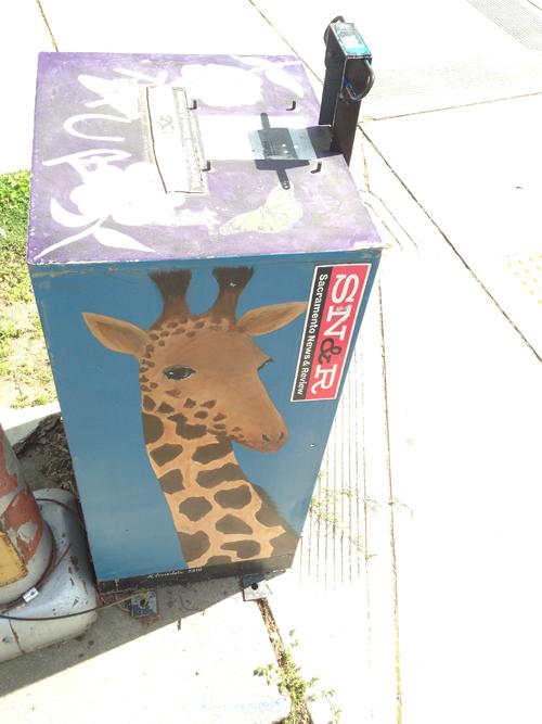 giraffe snr box